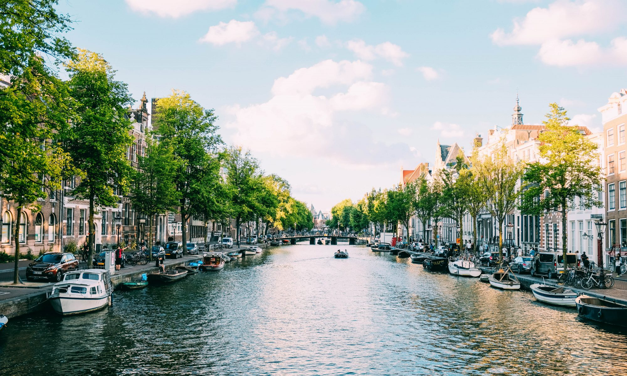 Tax adviser Netherlands